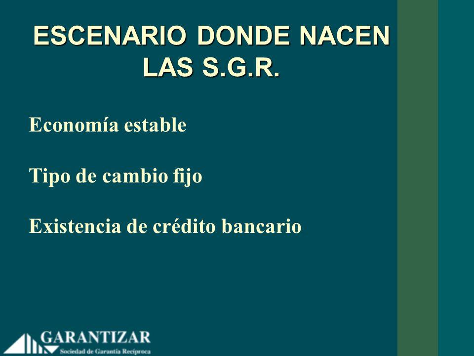 ESCENARIO DONDE NACEN LAS S.G.R. Economía estable Tipo de cambio fijo Existencia de crédito bancario