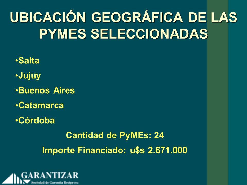 UBICACIÓN GEOGRÁFICA DE LAS PYMES SELECCIONADAS Salta Jujuy Buenos Aires Catamarca Córdoba Cantidad de PyMEs: 24 Importe Financiado: u$s 2.671.000