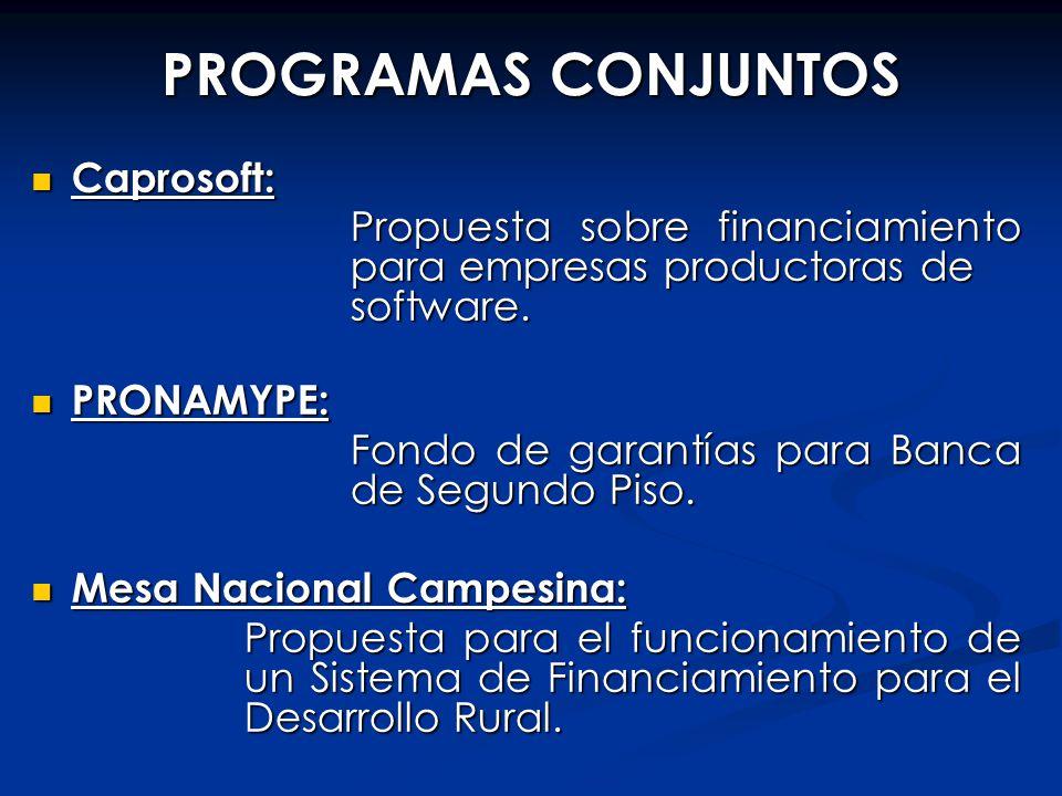 PROGRAMAS CONJUNTOS Caprosoft: Caprosoft: Propuesta sobre financiamiento para empresas productoras de software. PRONAMYPE: PRONAMYPE: Fondo de garantí