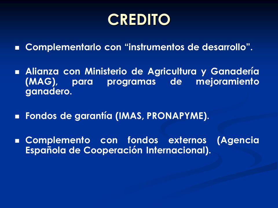 CREDITO Complementarlo con instrumentos de desarrollo. Alianza con Ministerio de Agricultura y Ganadería (MAG), para programas de mejoramiento ganader