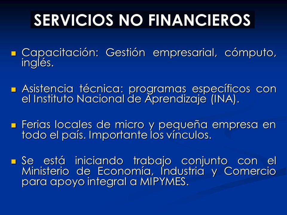 SERVICIOS NO FINANCIEROS Capacitación: Gestión empresarial, cómputo, inglés. Capacitación: Gestión empresarial, cómputo, inglés. Asistencia técnica: p