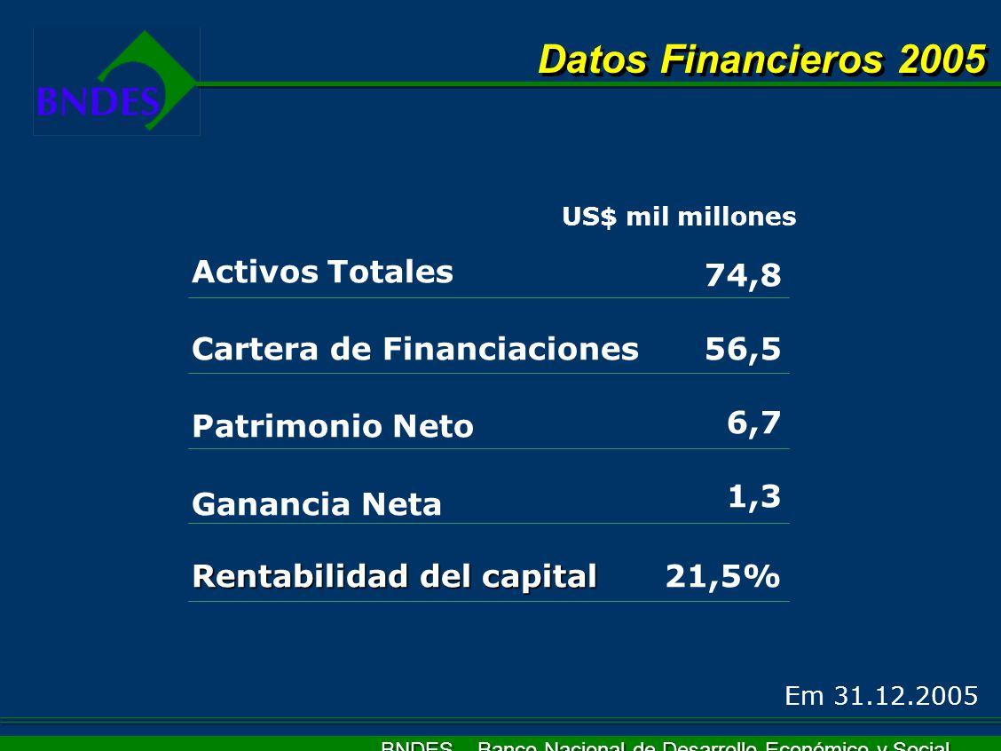 BNDES – Banco Nacional de Desarrollo Económico y Social Activos Totales Cartera de Financiaciones Patrimonio Neto Ganancia Neta Rentabilidad del capit