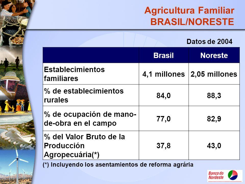 Agricultura Familiar BRASIL/NORESTE BrasilNoreste Establecimientos familiares 4,1 millones2,05 millones % de establecimientos rurales 84,088,3 % de oc
