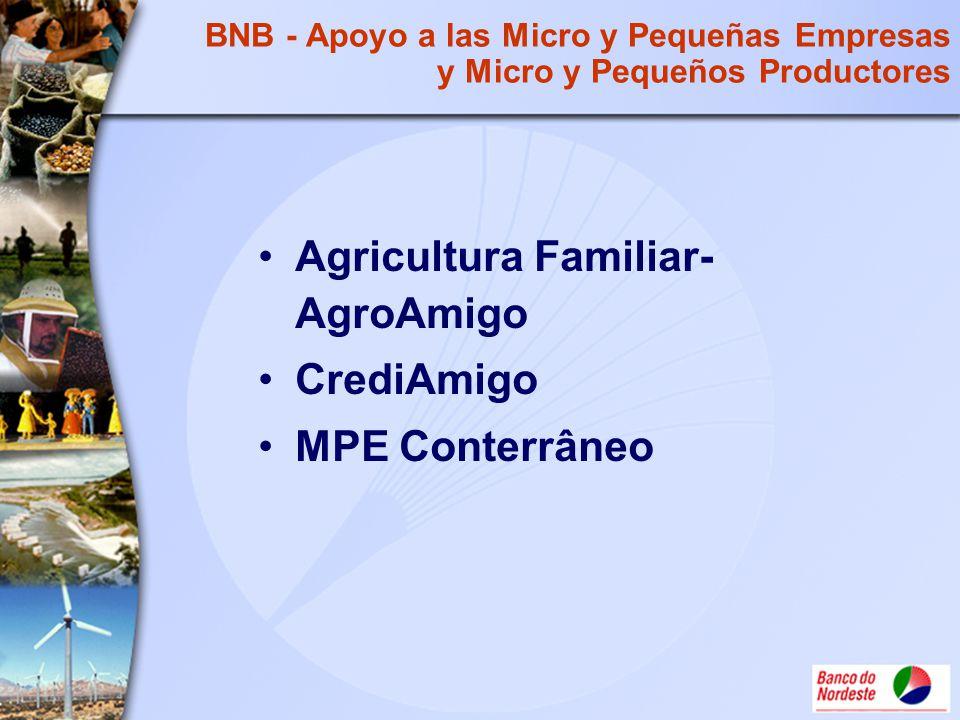 BNB - Apoyo a las Micro y Pequeñas Empresas y Micro y Pequeños Productores Agricultura Familiar- AgroAmigo CrediAmigo MPE Conterrâneo