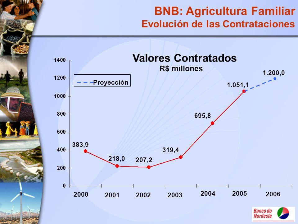 R$ millones 218,0 319,4 695,8 207,2 383,9 Valores Contratados 1.051,1 BNB: Agricultura Familiar Evolución de las Contrataciones 20022003 2004 2001 200