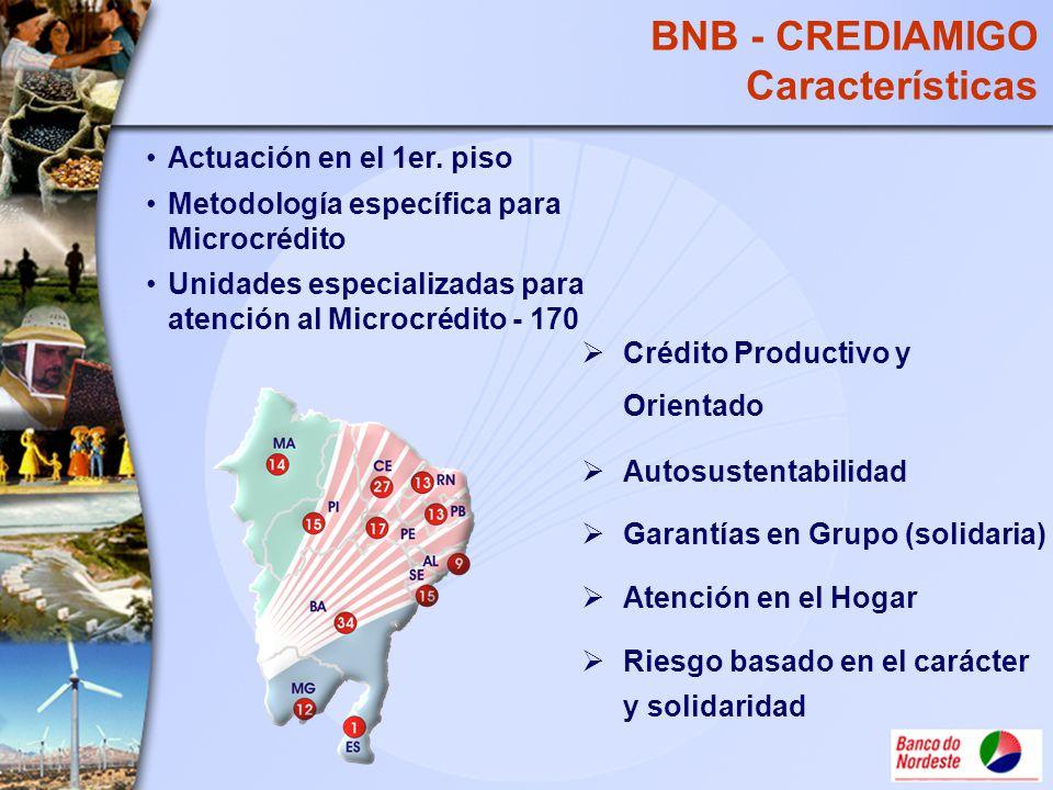 BNB - CREDIAMIGO Características Crédito Productivo y Orientado Autosustentabilidad Garantías en Grupo (solidaria) Atención en el Hogar Riesgo basado