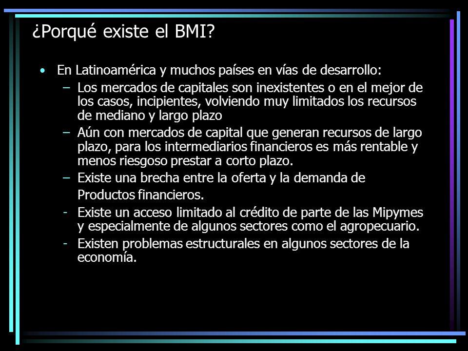 CREACIÓN DEL BMI En el proceso de modernización del Sistema Financiero iniciado en 1991, se determinó que era necesario: Incrementar los recursos destinados a desarrollar un mecanismo de crédito que facilitara el financiamiento de inversión multisectorial.