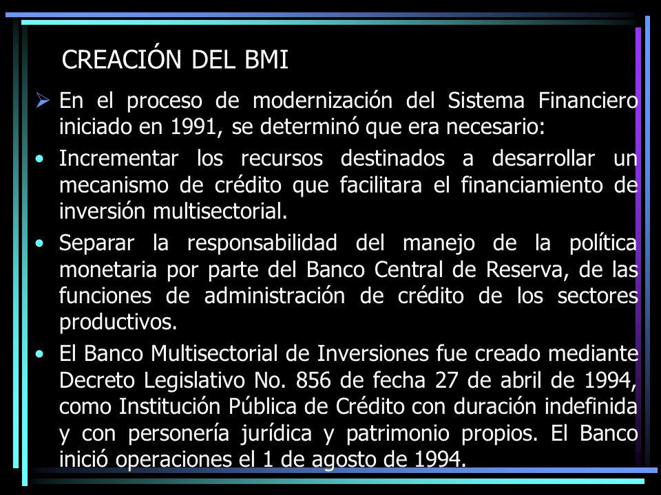 CREACIÓN DEL BMI En el proceso de modernización del Sistema Financiero iniciado en 1991, se determinó que era necesario: Incrementar los recursos dest