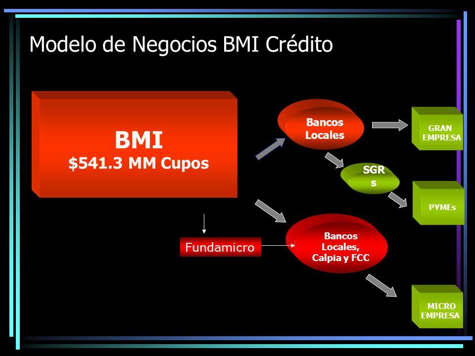 GRAN EMPRESA MICRO EMPRESA PYMEs SGRs Bancos IFNBs Modelo de Negocios BMI Fideicomisos Fideicomisos (8) Funciones: -Redescontar (FEDA, FIDEMYPE, FINAPRO, Fidevive) -Compensar intereses usuarios finales (FEDA, FITEX, FONTRA) -Invertir en Sociedades (FDSGR) -Otorgar garantías (FEDA, FINAPRO) -Emitir títulos (FICAFE US $250MM) -Administrar Recursos (Todos)