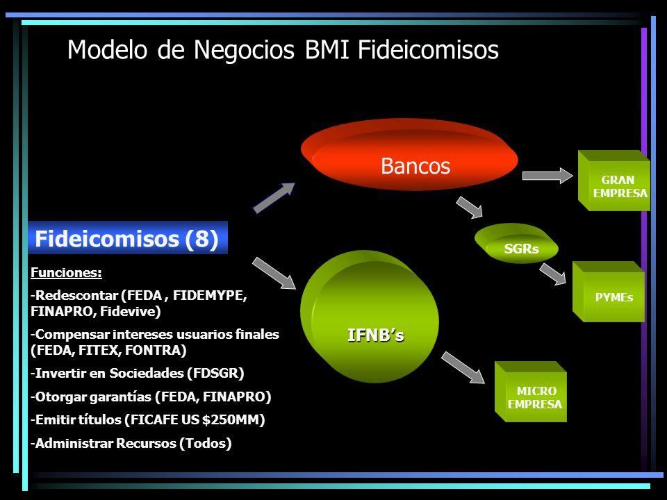 GRAN EMPRESA MICRO EMPRESA PYMEs SGRs Bancos IFNBs Modelo de Negocios BMI Fideicomisos Fideicomisos (8) Funciones: -Redescontar (FEDA, FIDEMYPE, FINAP