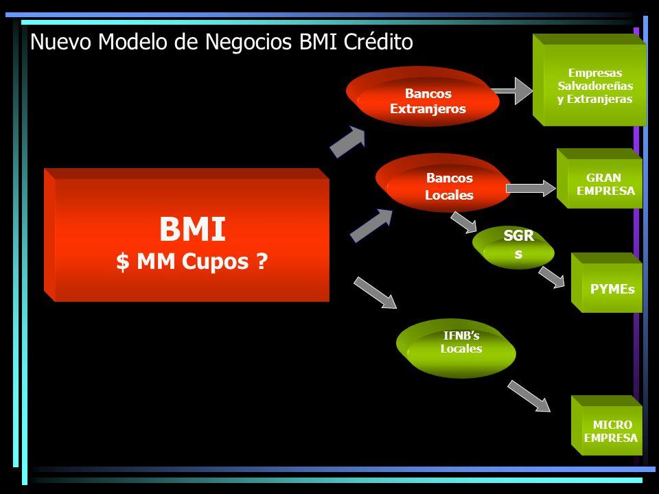 GRAN EMPRESA MICRO EMPRESA PYMEs SGR s Bancos Locales IFNBs Locales Nuevo Modelo de Negocios BMI Crédito BMI $ MM Cupos ? Bancos Extranjeros Empresas