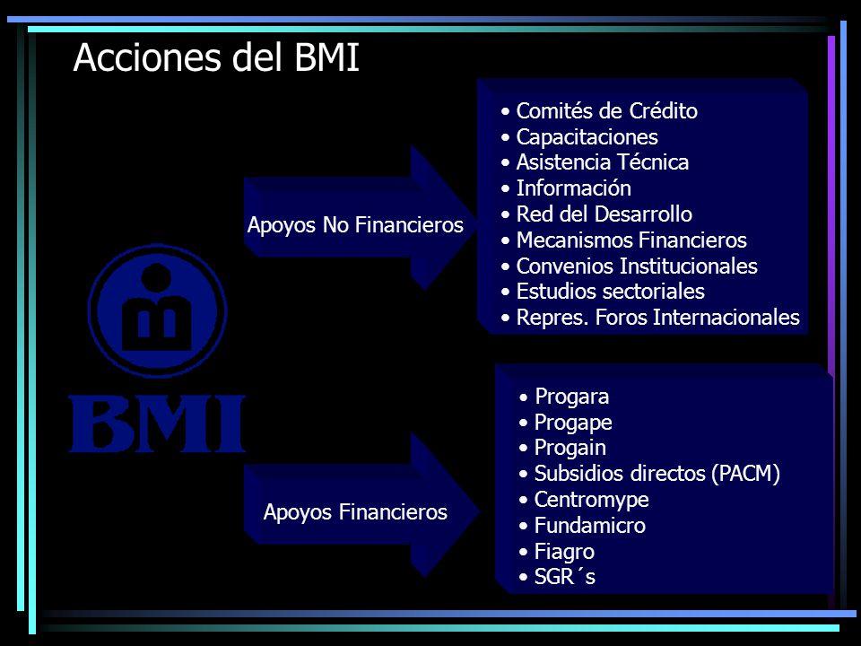 Web & Email 40 Centros de Servicio (Infocentros) Centro de Llamadas Clientes Información De Clientes Maximizando los Canales del BMI Mercadeo Sistemas de Operación y de Decisión IFI IFNB Ejecutivos BMI