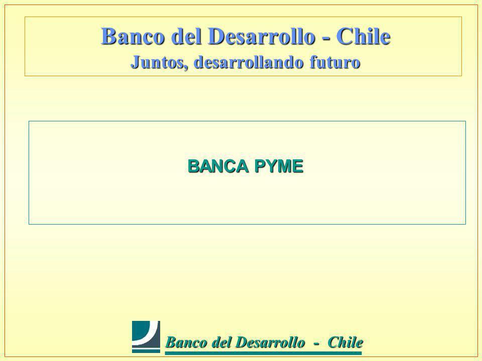 Banco del Desarrollo - Chile Banco del Desarrollo - Chile Banco del Desarrollo - Chile Juntos, desarrollando futuro BANCA PYME