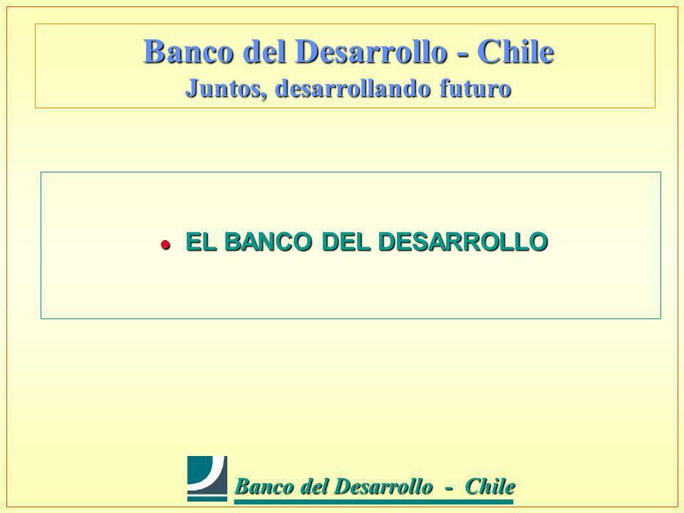 Banco del Desarrollo - Chile Banco del Desarrollo - Chile Banco del Desarrollo - Chile Juntos, desarrollando futuro l EL MERCADO DE LA PYME EN CHILE