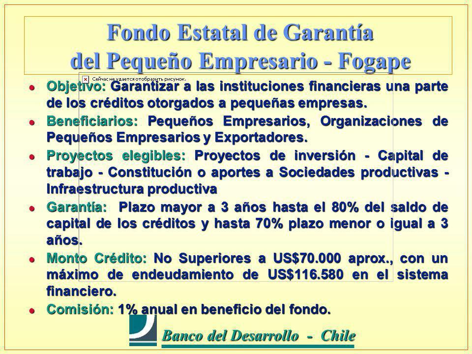 Banco del Desarrollo - Chile Banco del Desarrollo - Chile Fondo Estatal de Garantía del Pequeño Empresario - Fogape l Objetivo: Garantizar a las instituciones financieras una parte de los créditos otorgados a pequeñas empresas.