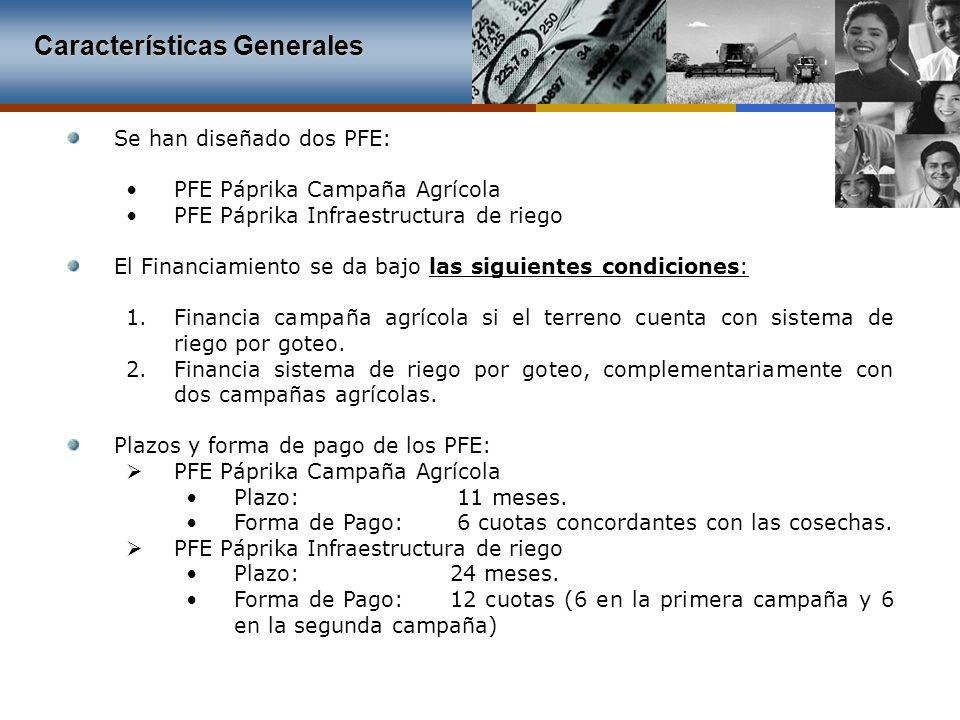 Características Generales Se han diseñado dos PFE: PFE Páprika Campaña Agrícola PFE Páprika Infraestructura de riego El Financiamiento se da bajo las