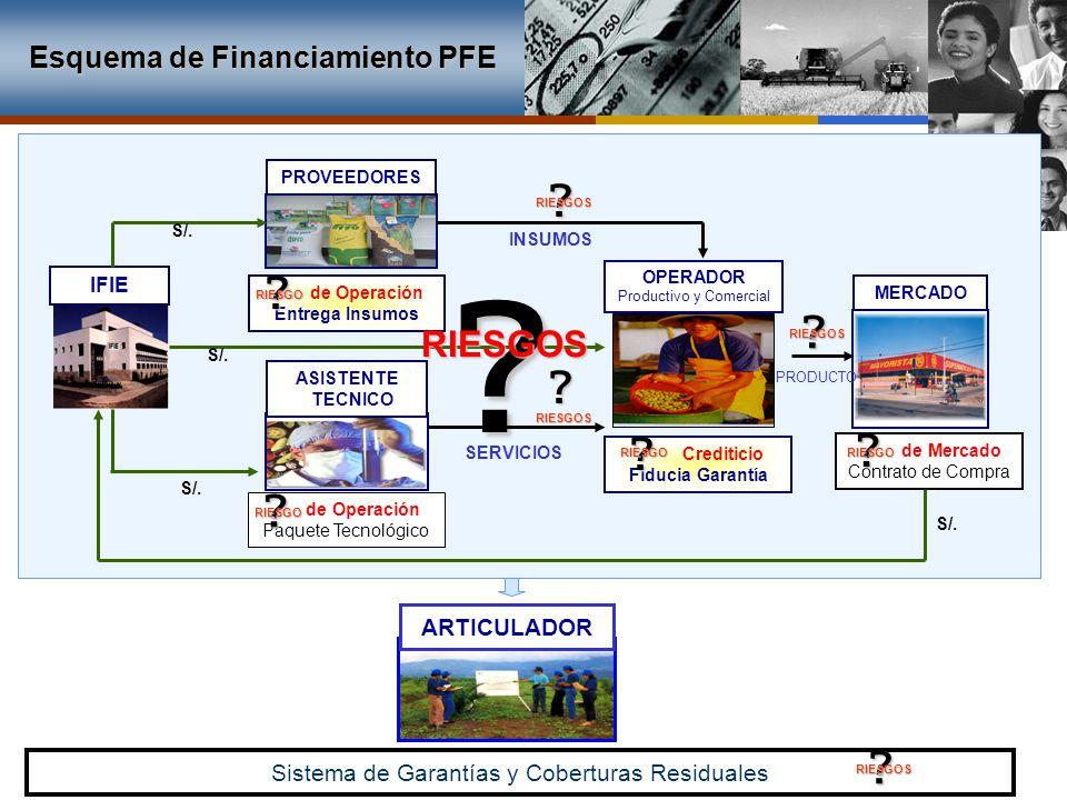 ASISTENTE TECNICO MERCADO IFIE PROVEEDORES Sistema de Garantías y Coberturas Residuales ARTICULADOR OPERADOR Productivo y Comercial de Mercado Contrat