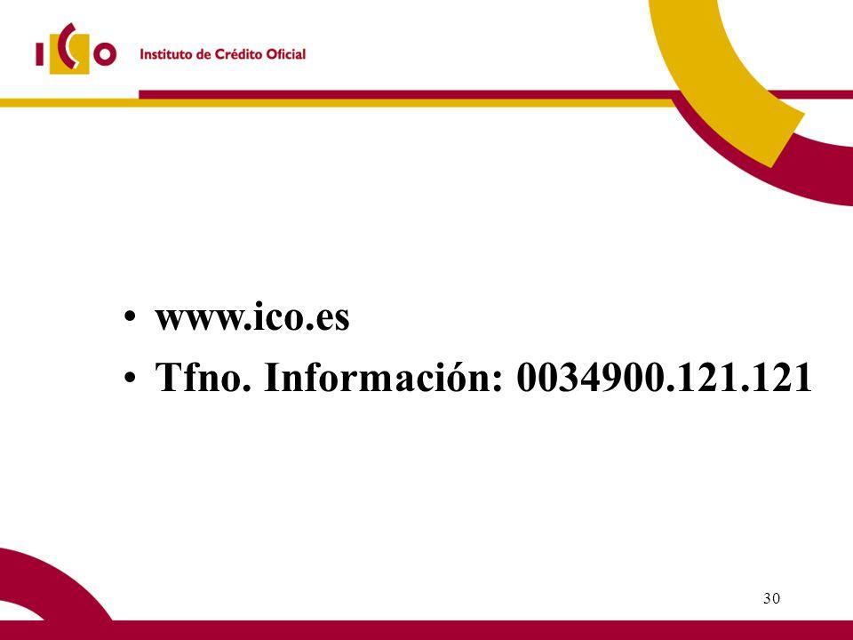 29 IMPORTES TOTALES LÍNEA ICO - IDAE 2004