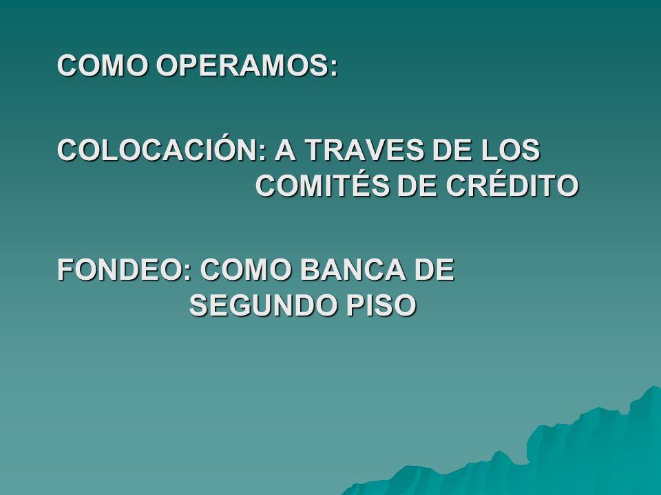 COMO MISIÓN NOS PROPONEMOS: SATISFACER LAS NECESIDADES FINANCIERAS DE LOS HABITANTES DEL ÁREA RURAL Y SEMI URBANA DE LA REGIÓN, EN FORMA EFICAZ Y EFICIENTE, PARA MEJORAR SU CALIDAD DE VIDA.