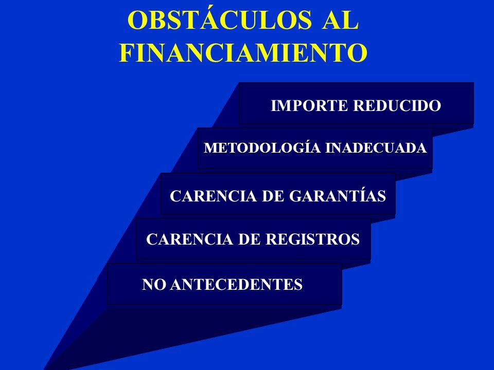 OBSTÁCULOS AL FINANCIAMIENTO IMPORTE REDUCIDO METODOLOGÍA INADECUADA CARENCIA DE GARANTÍAS CARENCIA DE REGISTROSNO ANTECEDENTES