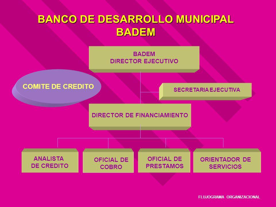 BANCO DE DESARROLLO MUNICIPAL BADEM BADEM DIRECTOR EJECUTIVO DIRECTOR DE FINANCIAMIENTO SECRETARIA EJECUTIVA ANALISTA DE CREDITO COMITE DE CREDITO COL