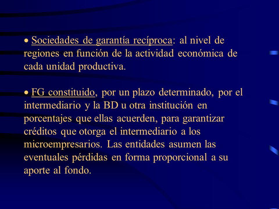 Sociedades de garantía recíproca: al nivel de regiones en función de la actividad económica de cada unidad productiva.