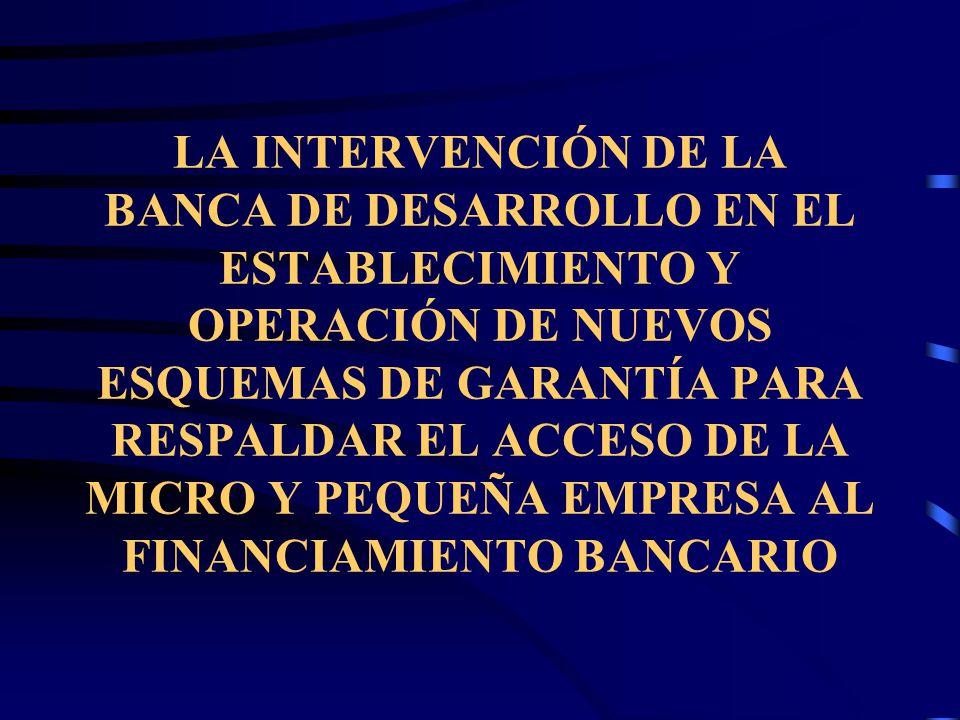 LA INTERVENCIÓN DE LA BANCA DE DESARROLLO EN EL ESTABLECIMIENTO Y OPERACIÓN DE NUEVOS ESQUEMAS DE GARANTÍA PARA RESPALDAR EL ACCESO DE LA MICRO Y PEQUEÑA EMPRESA AL FINANCIAMIENTO BANCARIO