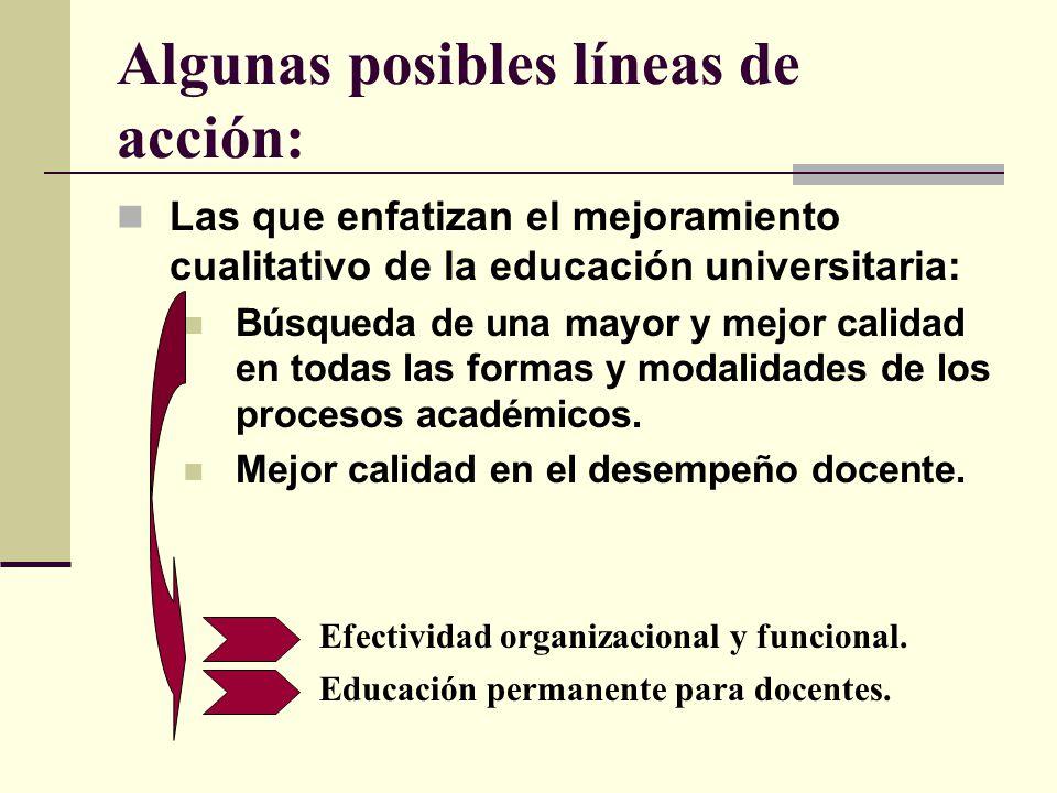 Algunas posibles líneas de acción: Las que enfatizan el mejoramiento cualitativo de la educación universitaria: Búsqueda de una mayor y mejor calidad