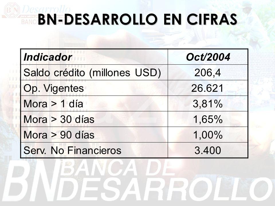 BN-DESARROLLO EN CIFRAS IndicadorOct/2004 Saldo crédito (millones USD)206,4 Op. Vigentes26.621 Mora > 1 día3,81% Mora > 30 días1,65% Mora > 90 días1,0