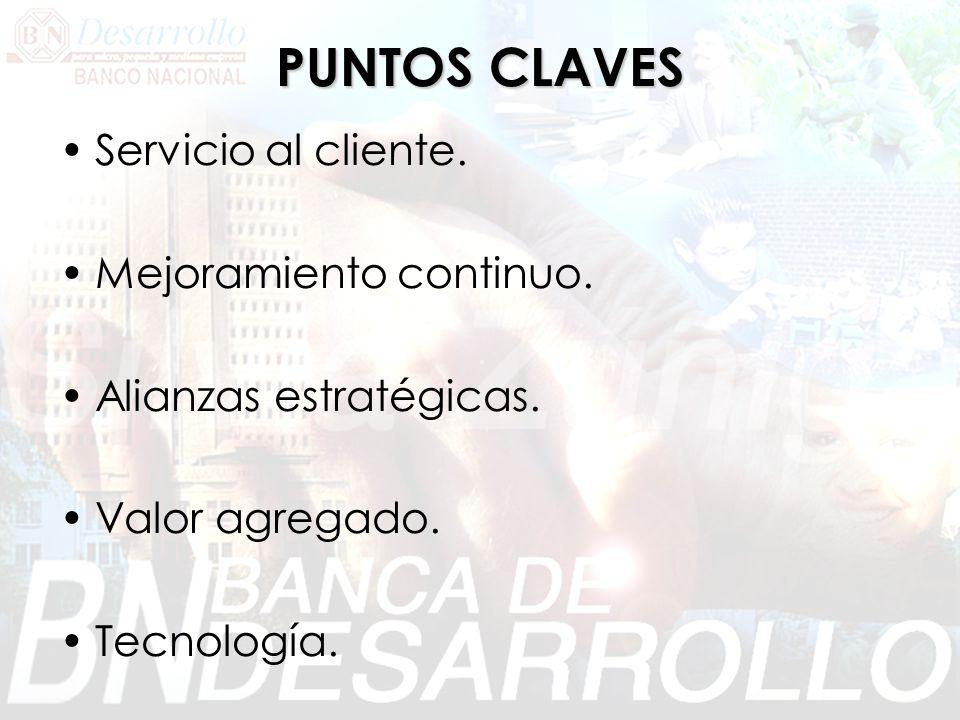 PUNTOS CLAVES Servicio al cliente. Mejoramiento continuo. Alianzas estratégicas. Valor agregado. Tecnología.