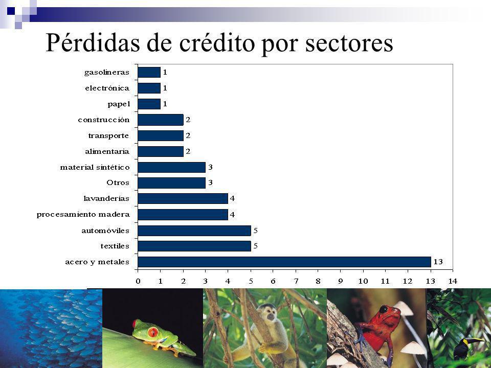 Pérdidas de crédito por sectores