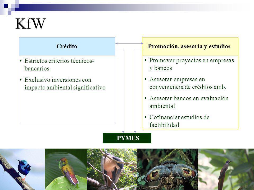 KfW Crédito Estrictos criterios técnicos- bancarios Exclusivo inversiones con impacto ambiental significativo Promover proyectos en empresas y bancos Asesorar empresas en conveniencia de créditos amb.