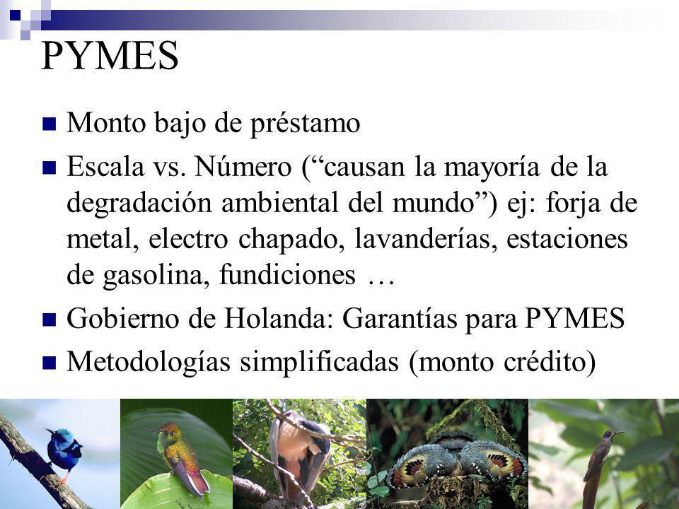 Situación América Latina INCAE: guías de ecoeficiencia, programas ambientales en bancos de A.L., Gerentes Ambientales.