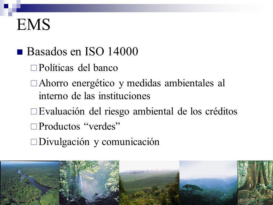 EMS Basados en ISO 14000 Políticas del banco Ahorro energético y medidas ambientales al interno de las instituciones Evaluación del riesgo ambiental de los créditos Productos verdes Divulgación y comunicación