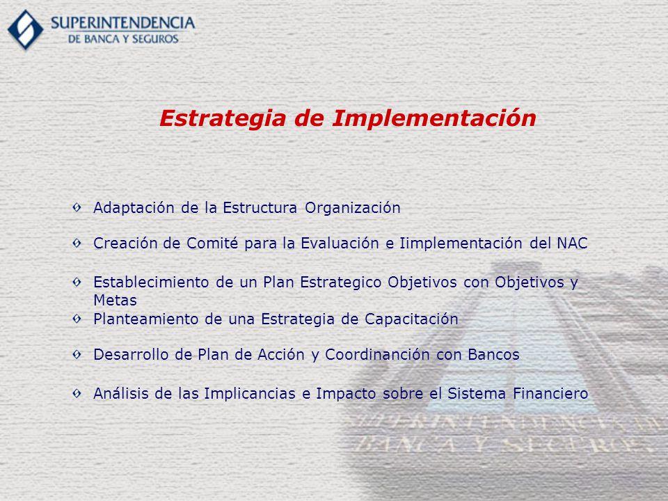 Establecimiento de un Plan Estrategico Objetivos con Objetivos y Metas Adaptación de la Estructura Organización Creación de Comité para la Evaluación e Iimplementación del NAC Estrategia de Implementación Planteamiento de una Estrategia de Capacitación Desarrollo de Plan de Acción y Coordinanción con Bancos Análisis de las Implicancias e Impacto sobre el Sistema Financiero
