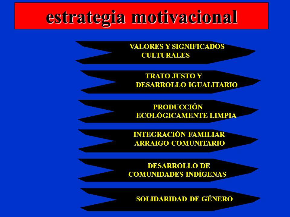 estrategia motivacional VALORES Y SIGNIFICADOS CULTURALES TRATO JUSTO Y DESARROLLO IGUALITARIO PRODUCCIÓN ECOLÓGICAMENTE LIMPIA SOLIDARIDAD DE GÉNERO DESARROLLO DE COMUNIDADES INDÍGENAS INTEGRACIÓN FAMILIAR ARRAIGO COMUNITARIO