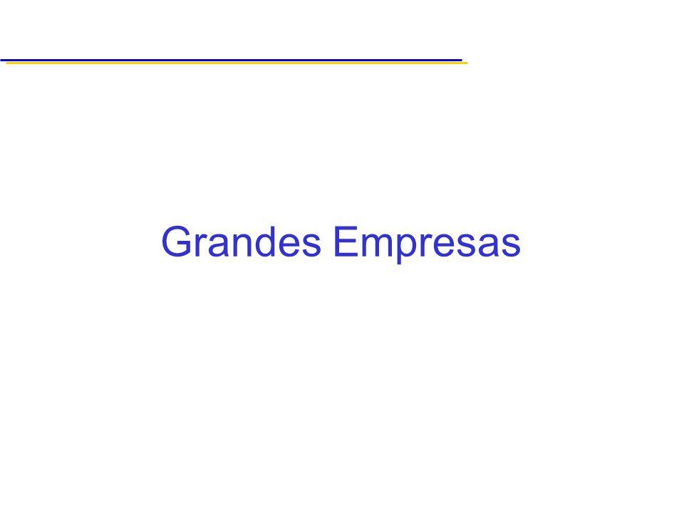 Grandes Empresas