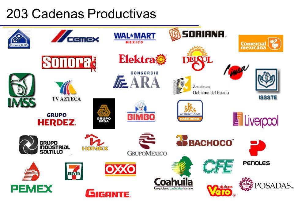 203 Cadenas Productivas