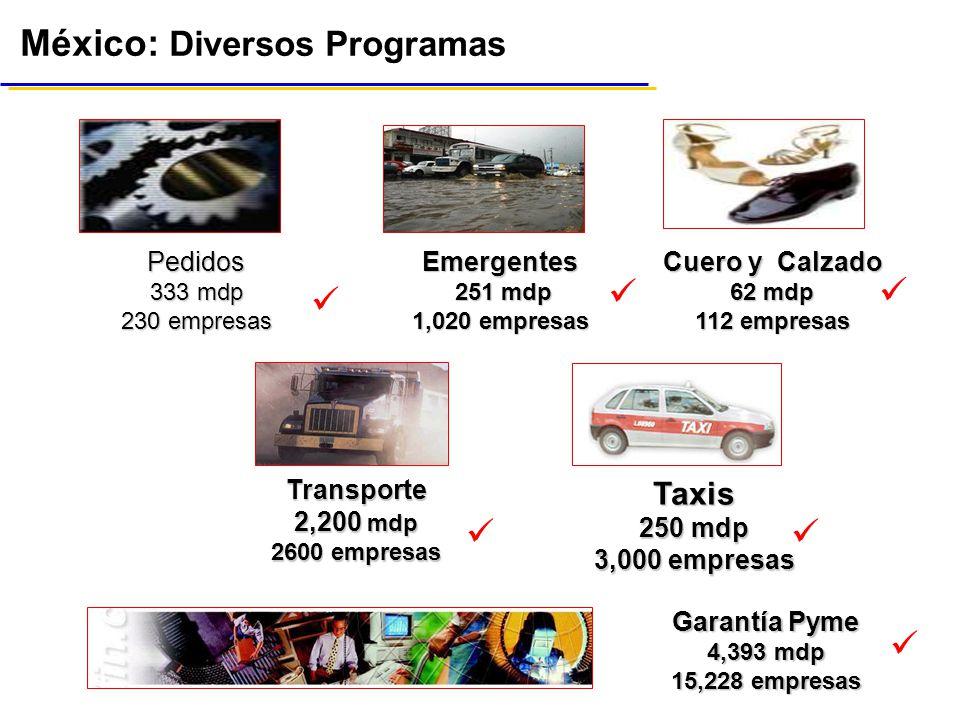 México: Diversos Programas Emergentes 251 mdp 251 mdp 1,020 empresas Transporte 2,200 mdp 2600 empresas Taxis 250 mdp 3,000 empresas Cuero y Calzado 62 mdp 112 empresas Pedidos 333 mdp 230 empresas Garantía Pyme 4,393 mdp 15,228 empresas......