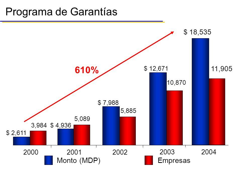 Monto (MDP)Empresas Programa de Garantías 610% 200020012002 $ 2,611 3,984 $ 4,936 5,089 $ 7,988 5,885 2003 $ 12,671 10,870 2004 $ 18,535 11,905