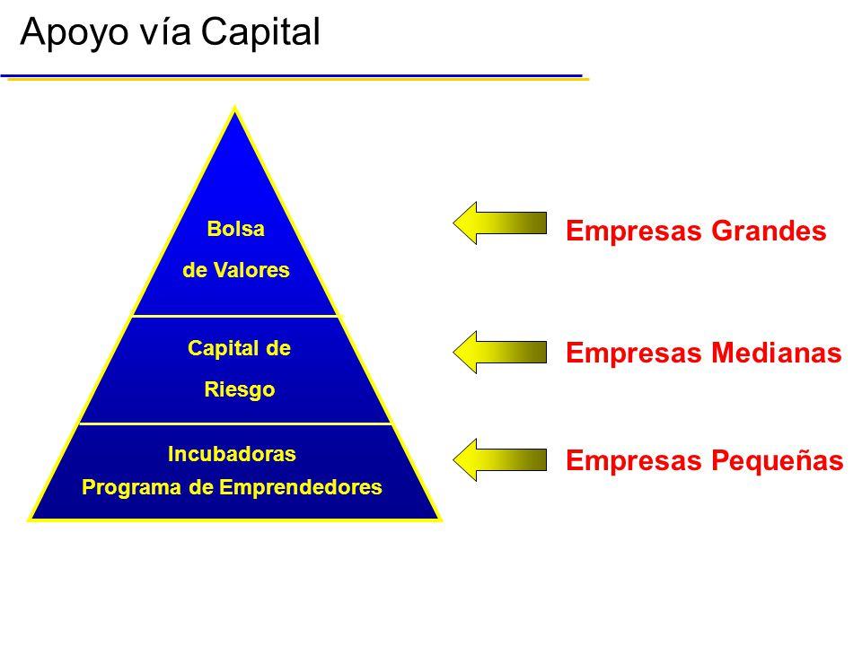 Apoyo vía Capital Capital de Riesgo Programa de Emprendedores Incubadoras Empresas Pequeñas Empresas Medianas Empresas Grandes Bolsa de Valores