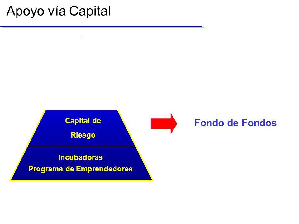 Apoyo vía Capital Capital de Riesgo Bolsa Mexicana de Valores Capital de Riesgo Programa de Emprendedores Incubadoras Bolsa Mexicana de Valores Fondo de Fondos