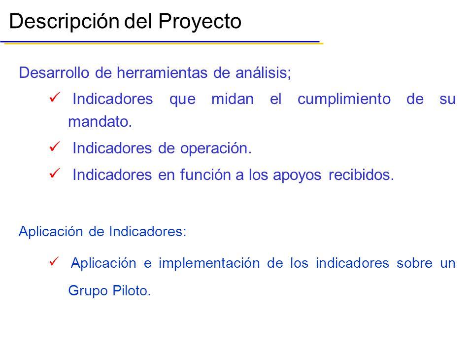 Descripción del Proyecto Desarrollo de herramientas de análisis; Indicadores que midan el cumplimiento de su mandato.