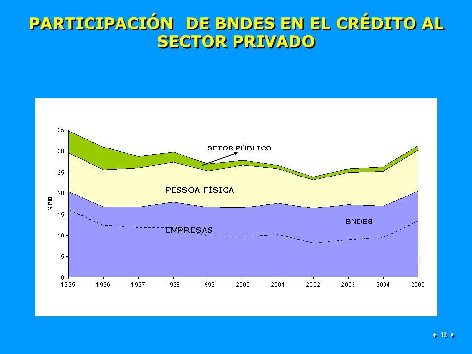 13 PARTICIPACIÓN DE BNDES EN EL CRÉDITO AL SECTOR PRIVADO