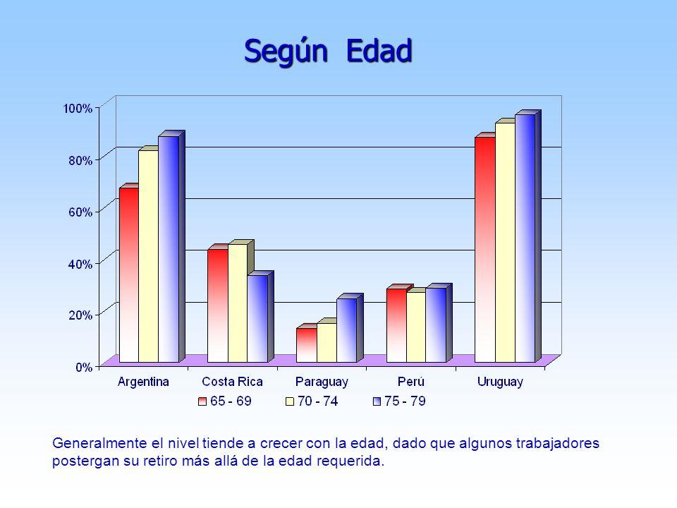 Según Edad Generalmente el nivel tiende a crecer con la edad, dado que algunos trabajadores postergan su retiro más allá de la edad requerida.