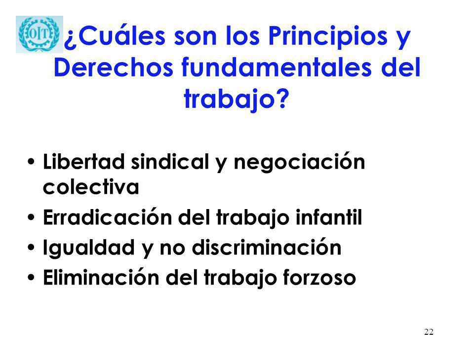 22 ¿Cuáles son los Principios y Derechos fundamentales del trabajo? Libertad sindical y negociación colectiva Erradicación del trabajo infantil Iguald