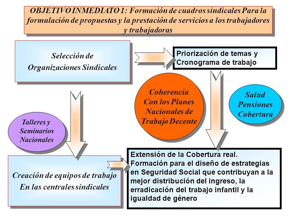 Selección de Organizaciones Sindicales Selección de Organizaciones Sindicales Priorización de temas y Cronograma de trabajo Coherencia Con los Planes