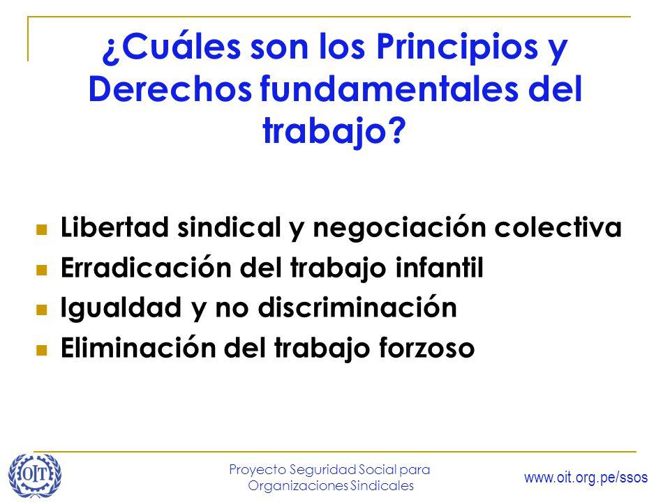 www.oit.org.pe/ssos Proyecto Seguridad Social para Organizaciones Sindicales ¿Cuáles son los Principios y Derechos fundamentales del trabajo? Libertad