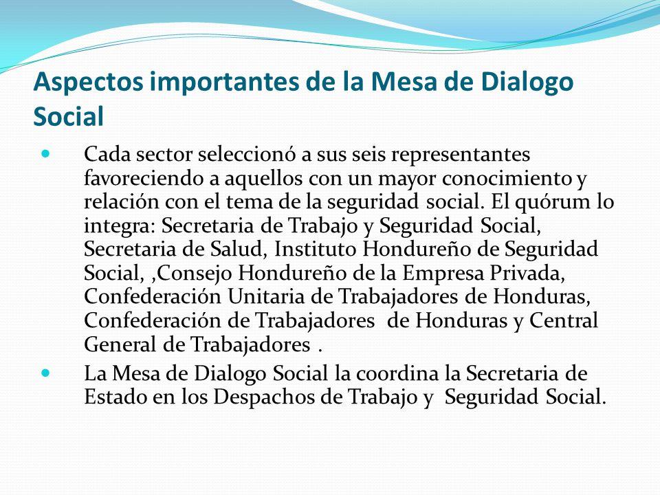 Aspectos importantes de la Mesa de Dialogo Social Cada sector seleccionó a sus seis representantes favoreciendo a aquellos con un mayor conocimiento y relación con el tema de la seguridad social.