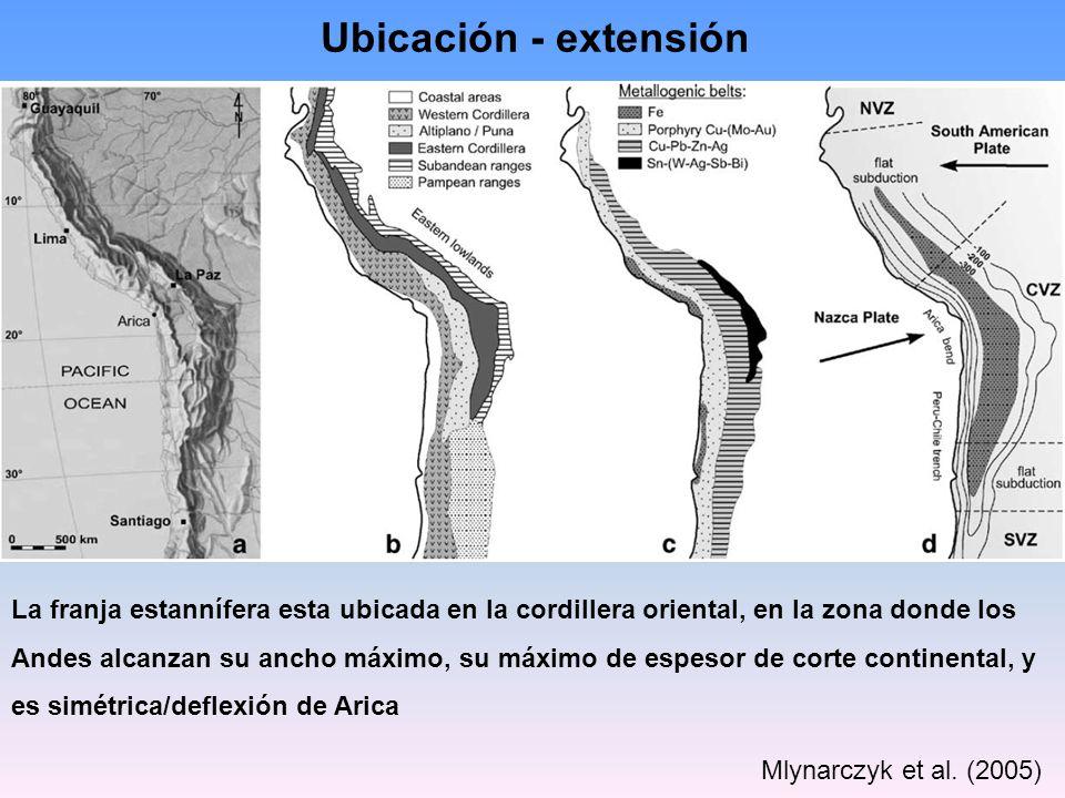 Mlynarczyk et al. (2005) Ubicación - extensión La franja estannífera esta ubicada en la cordillera oriental, en la zona donde los Andes alcanzan su an